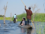 Quietly gliding along in a Mokoro dugout canoe, in the Okavango Delta, Botswana looking for finches Photo: Eelco Meyjes