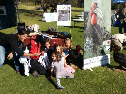Lucy Kemp from the Ground-Hornbill project spends time with young kids, at the SASOL Bird fair, teaching them all about the treatened bird