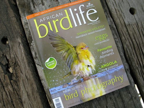 African birdlife Sept / Oct spring issue. Now available