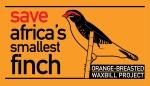 save finch-logo 1