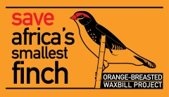 save-finch-logo-1